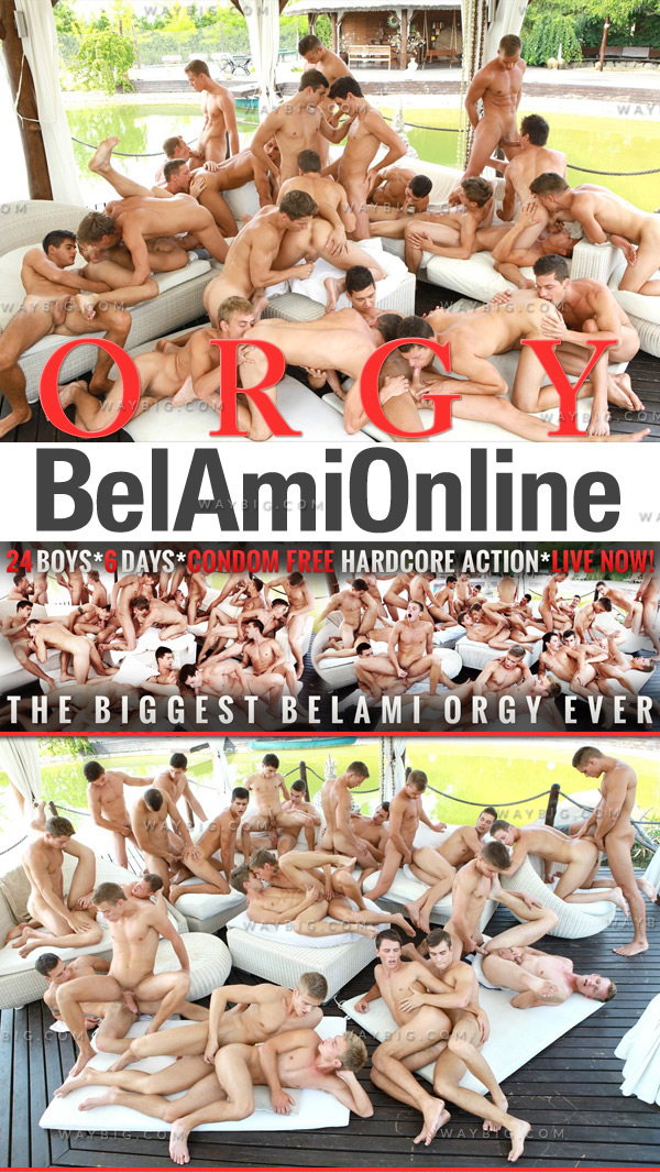Orgy (24 Boys In Action) (Bareback) at BelAmiOnline.com