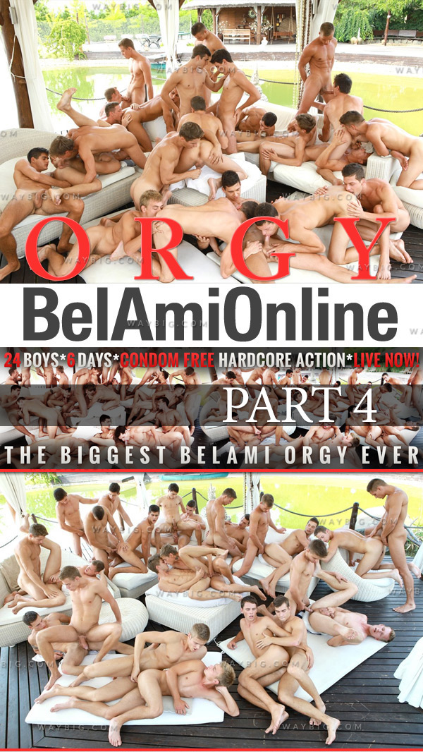 Orgy (24 Boys In Cumshot Action) (Part 4) at BelAmiOnline.com