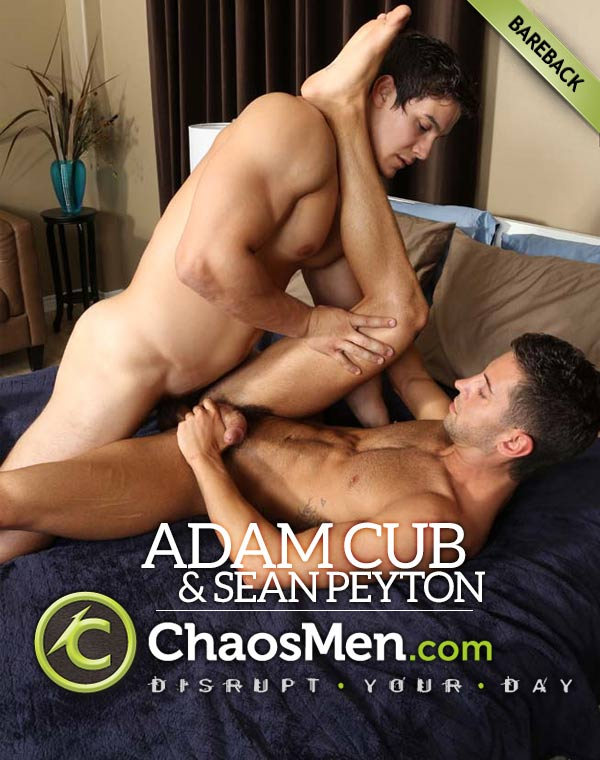 Adam Cub Fucks Sean Peyton (Bareback) at ChaosMen