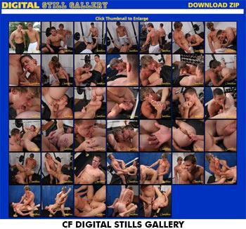 CF Digital Still Gallery