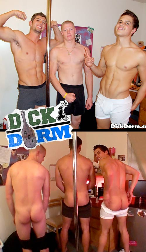 Apples and Balls at DickDorm.com