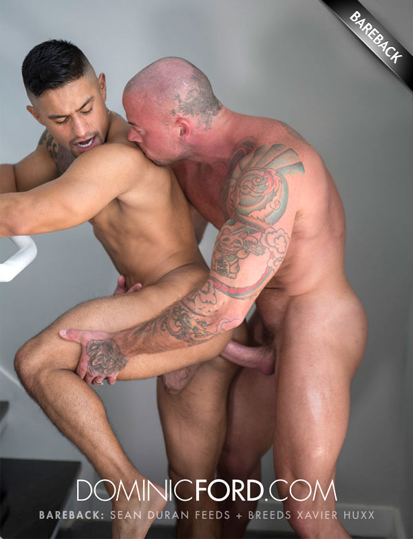 Sean Duran Feeds and Breeds Xavier Huxx at DominicFord.com