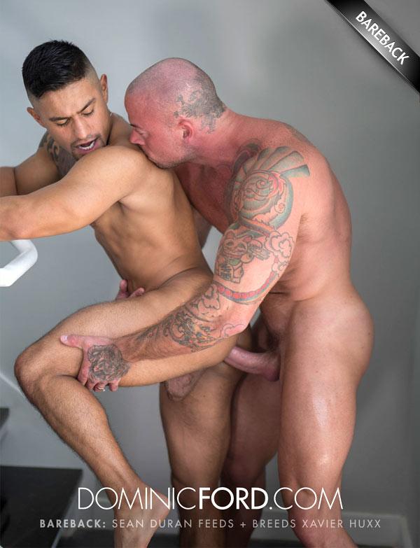 Sean Duran Feeds and Breeds Xavier Huxx at DominicFord.com