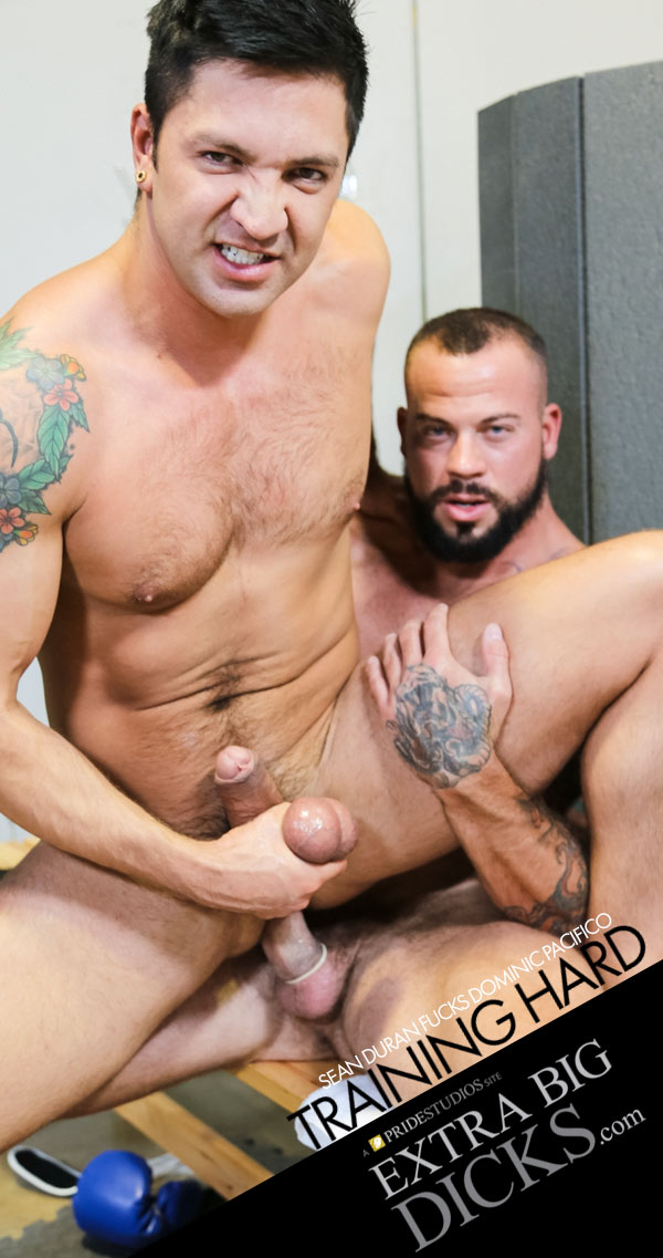 Training Hard: Part 2 (Sean Duran Fucks Dominic Pacifico) at ExtraBigDicks.com