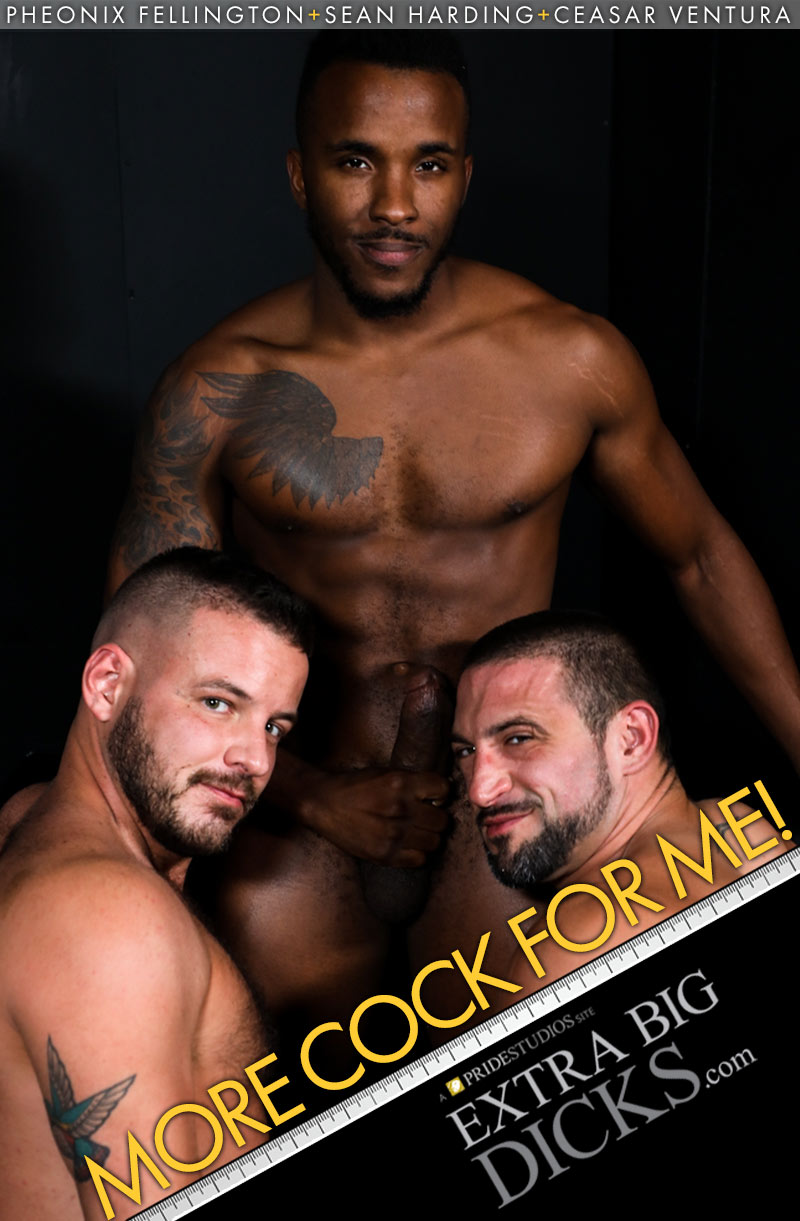 More Cock For Me (Pheonix Fellington, Sean Harding and Ceasar Ventura) at ExtraBigDicks