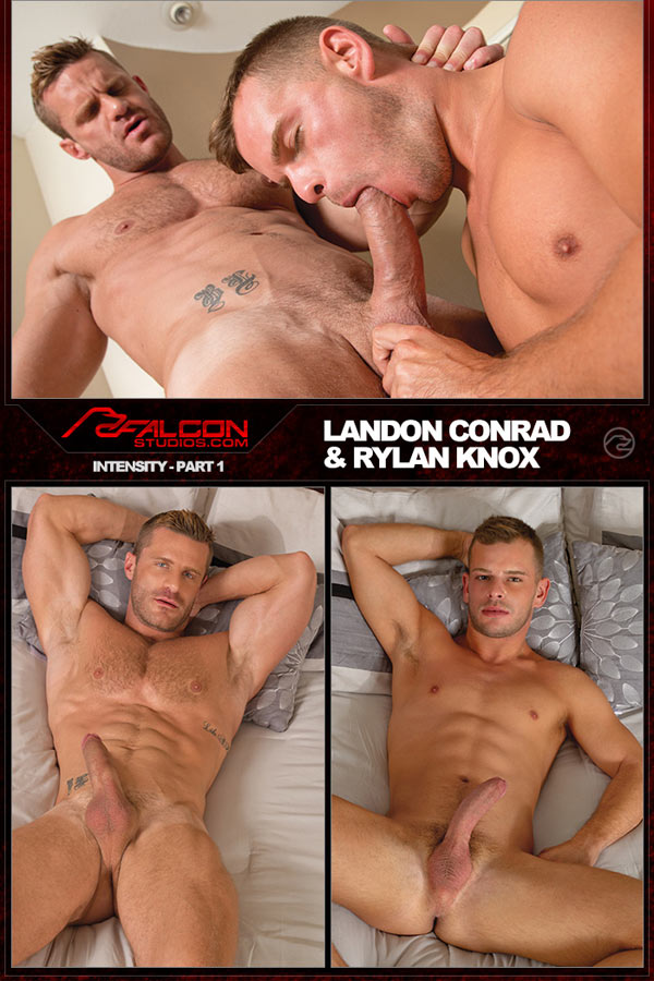 Intensity: Part 1 (Landon Conrad & Rylan Knox) (Scene 3) at FalconStudios