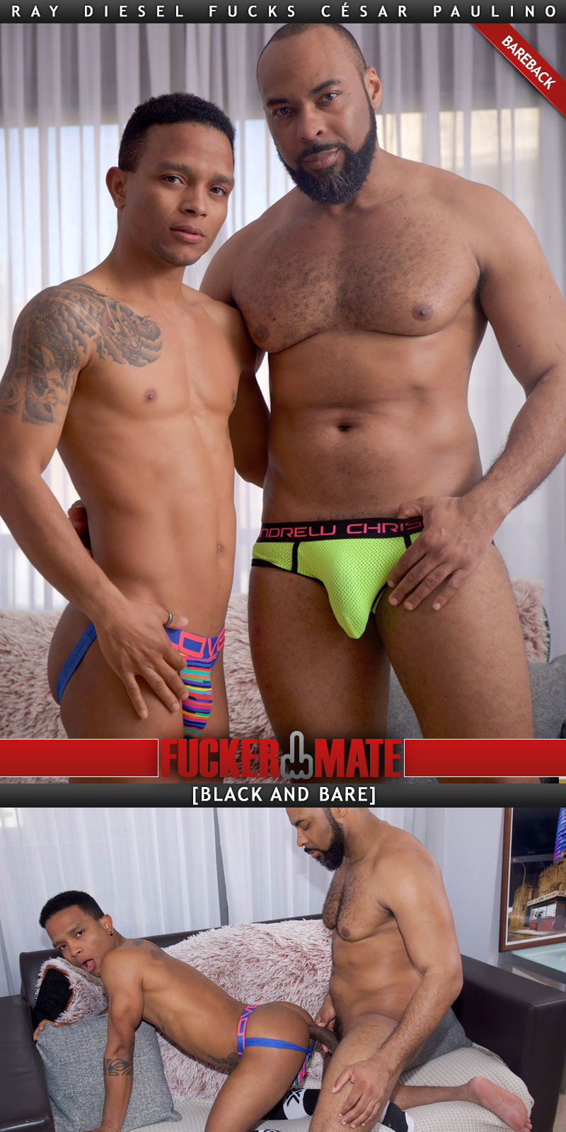 Black and Bare (Ray Diesel Fucks César Paulino) (Bareback) at Fuckermate