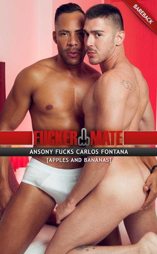Apples and Bananas (Ansony Fucks Carlos Fontana) (Bareback) at Fuckermate