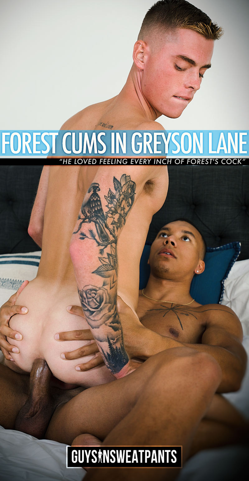 Forest Cums in Greyson Lane (Bareback) at Guys In Sweatpants