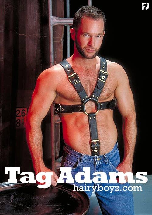 Tag Adams (Set 4) at HairyBoyz