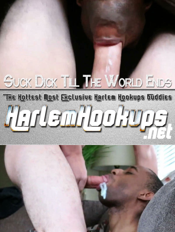 Suck Dick Till The World Ends at HarlemHookups