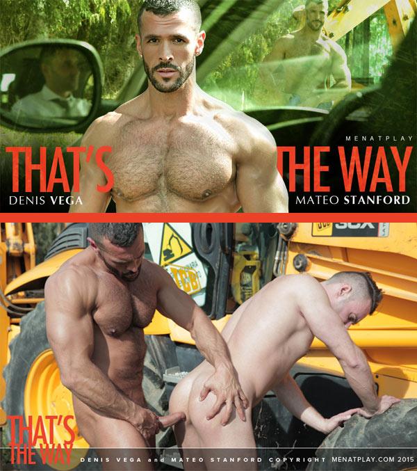 That's The Way (Denis Vega & Mateo Stanford) on MenAtPlay