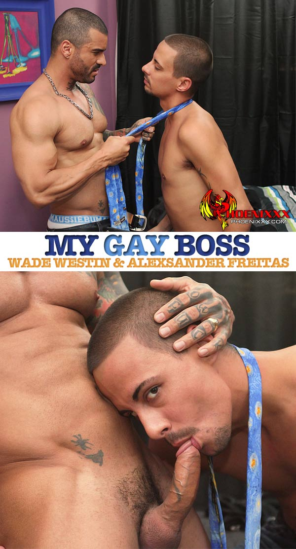 Wade Westin & Alexsander Freitas at My Gay Boss