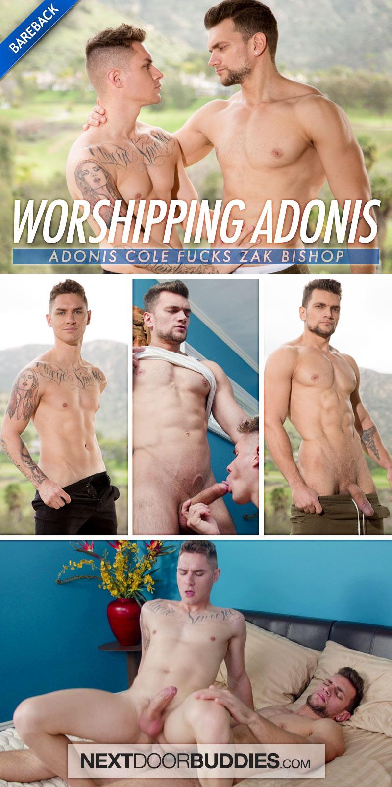 Worshipping Adonis (Adonis Cole Fucks Zak Bishop) (Bareback) at Next Door Buddies