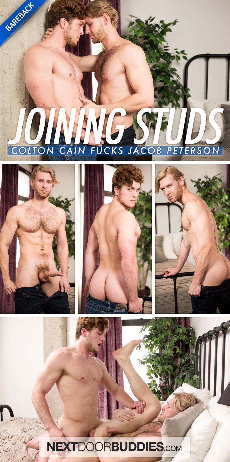 Joining Studs (Colton Cain Fucks Jacob Peterson) at Next Door Buddies