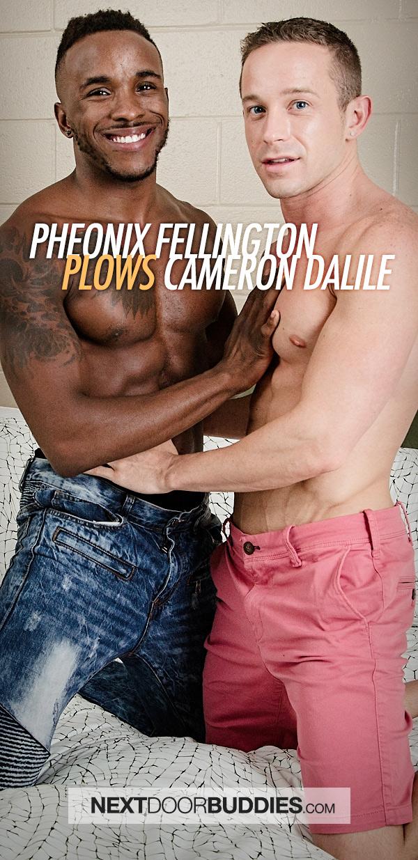 Pheonix Fellington Plows Cameron Dalile at Next Door Buddies