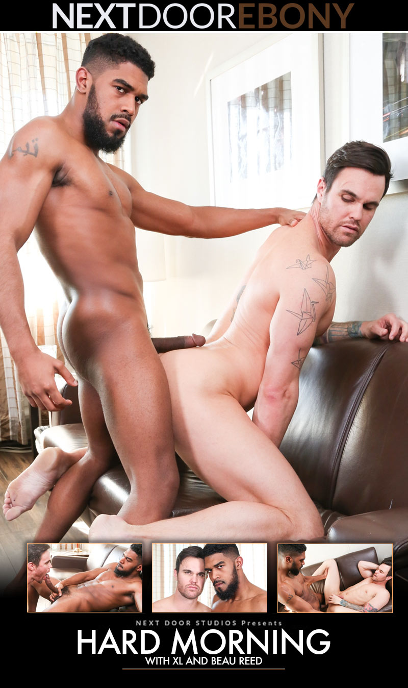 Hard Morning (XL Fucks Beau Reed) at NextDoorEbony