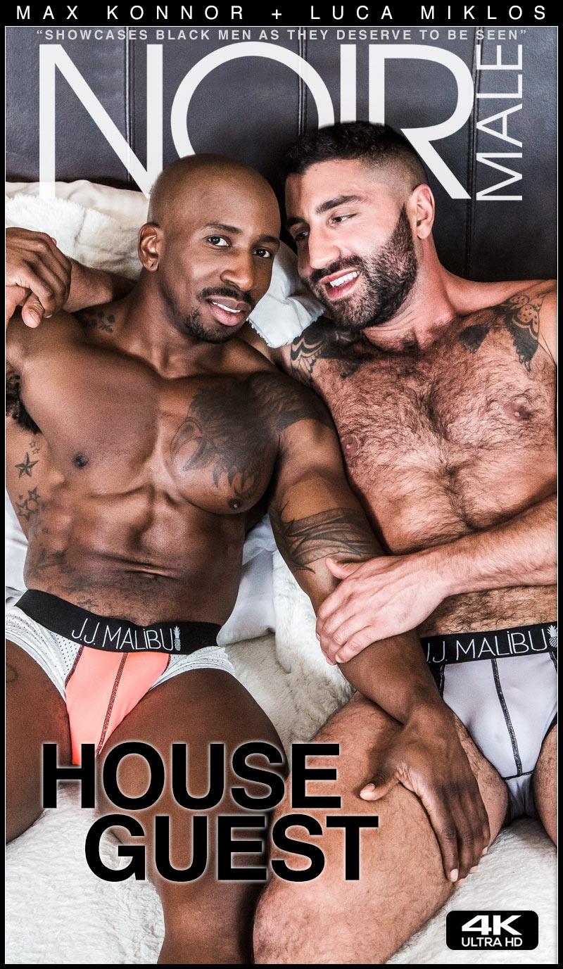 House Guest (Max Konnor Fucks Luca Miklos) at Noir Male