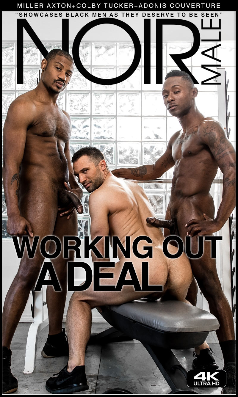 Working Out A Deal (Miller Axton, Colby Tucker and Adonis Couverture) at Noir Male