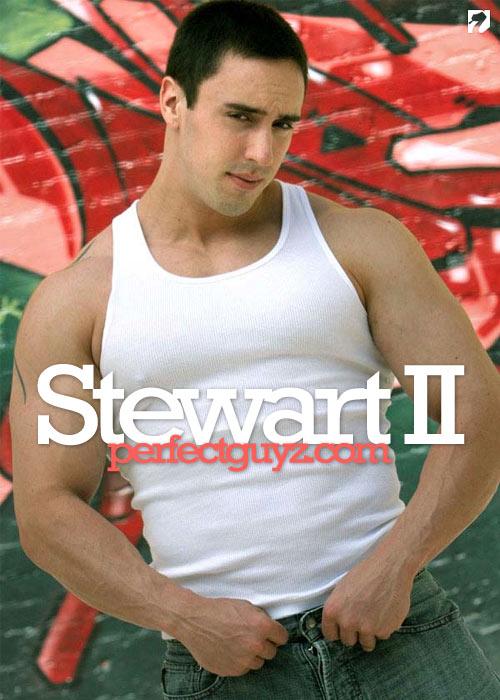 Stewart II at PerfectGuyz