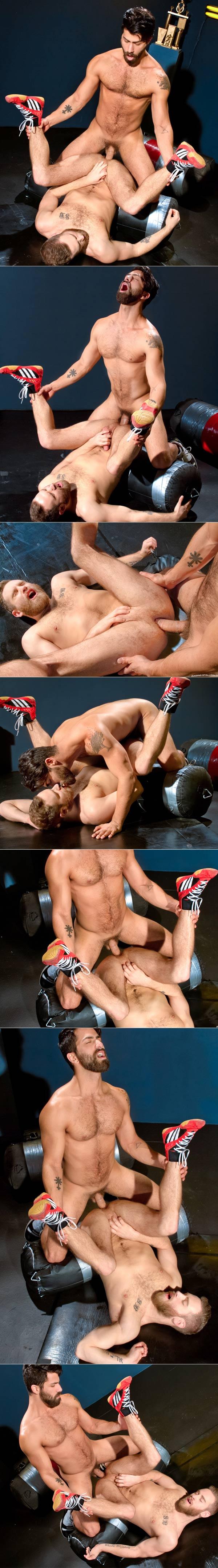 Cock Fight! (Shawn Wolfe & Adam Ramzi) (Scene 2) at Raging Stallion