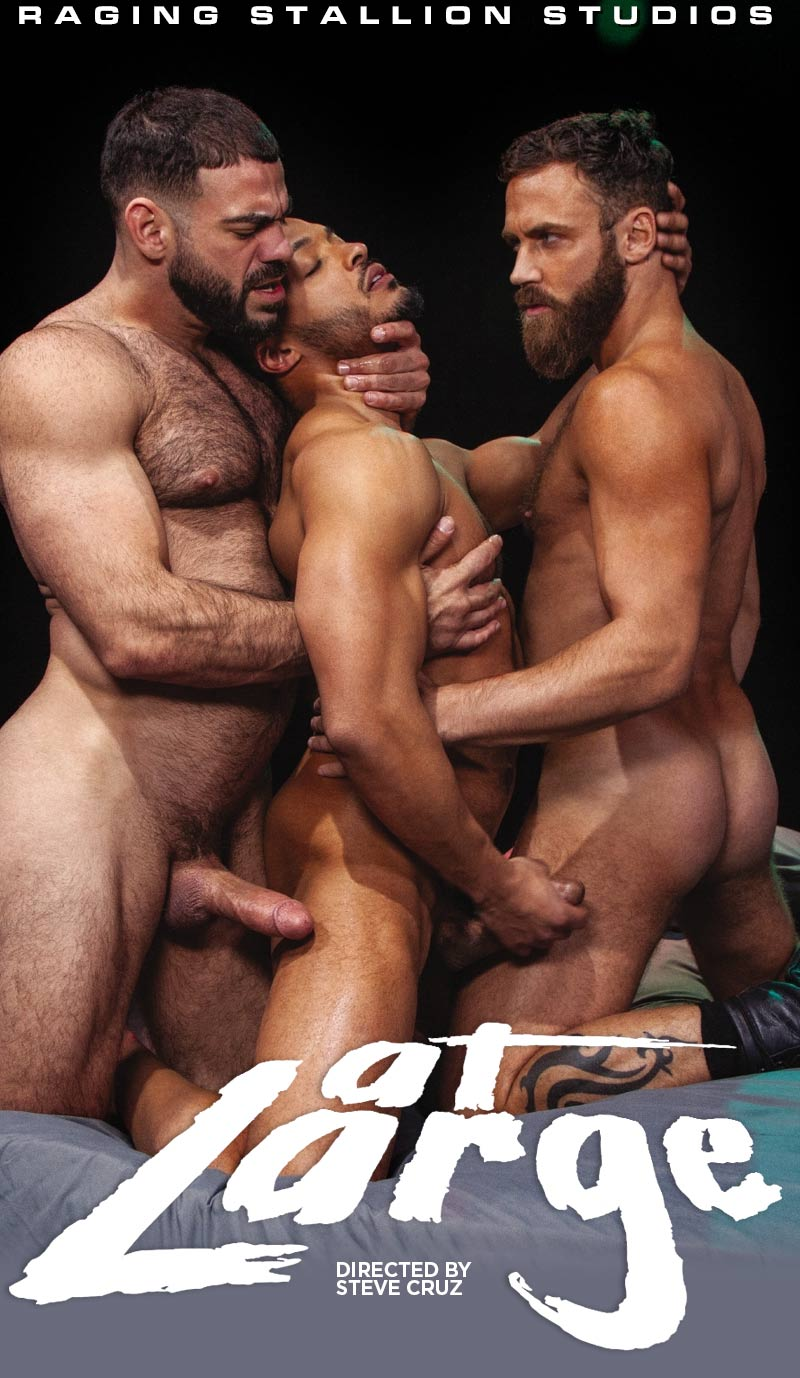 At Large, Scene Five (Ricky Larkin, Logan Moore and Dillon Diaz) at Raging Stallion