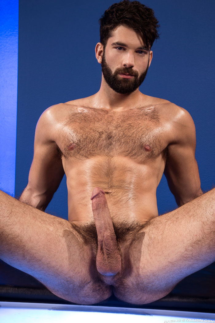 Dick harden gay pornstar