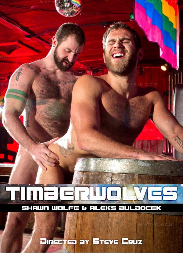 Timberwolves (Shawn Wolfe & Aleks Buldocek) at Raging Stallion
