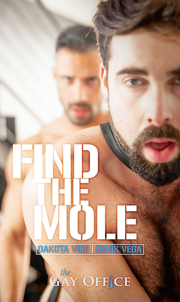 Find The Mole (Dakota Vice & Denis Vega) (Part 1) at The Gay Office