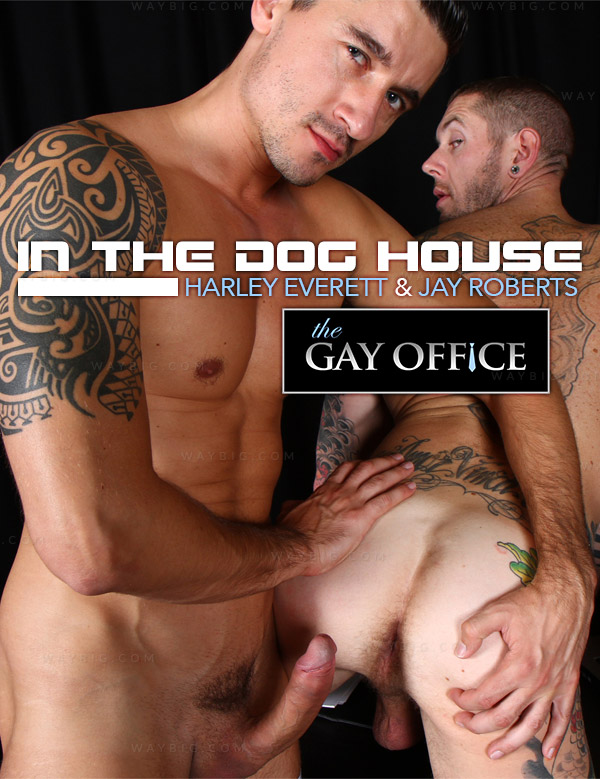 In The Dog House (Harley Everett & Jay Roberts) at The Gay Office