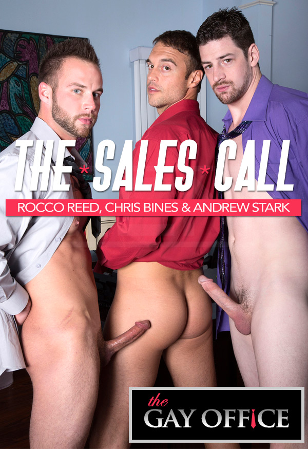 The Sales Call (Rocco Reed, Chris Bines & Andrew Stark) at The Gay Office
